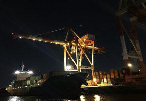 青海コンテナ埠頭(ライトアップ恐竜ガントリークレーン)の画像